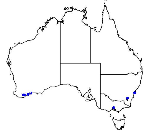 distribution map showing range of Banksia oreophila in Australia