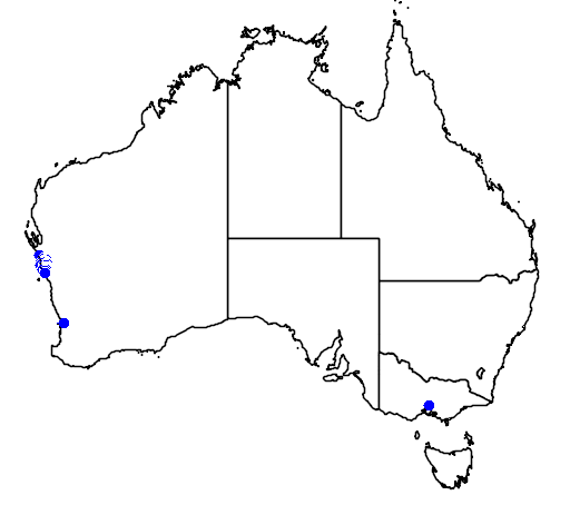 distribution map showing range of Banksia victoriae in Australia