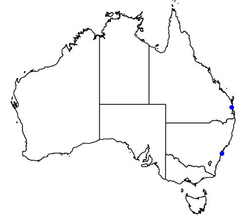 distribution map showing range of Bartramia longicauda in Australia