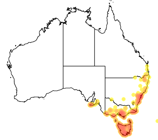 distribution map showing range of Bauera rubioides in Australia