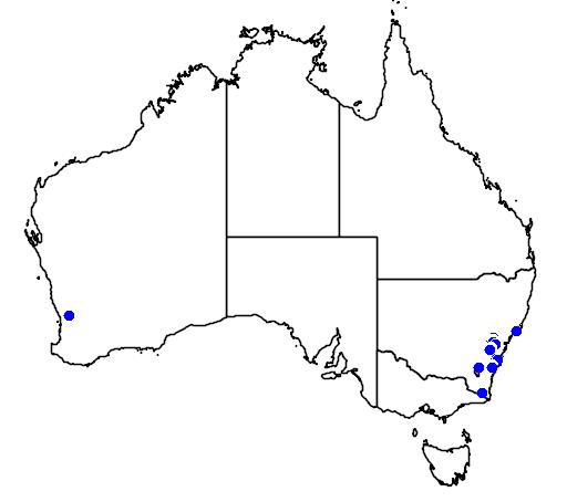 distribution map showing range of Boronia deanei in Australia