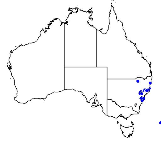 distribution map showing range of Boronia mollis in Australia