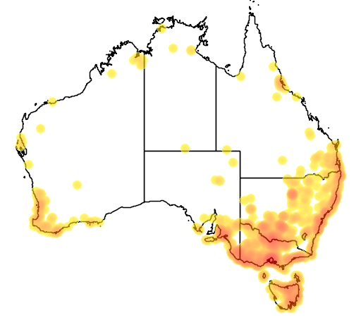 distribution map showing range of Botaurus poiciloptilus in Australia