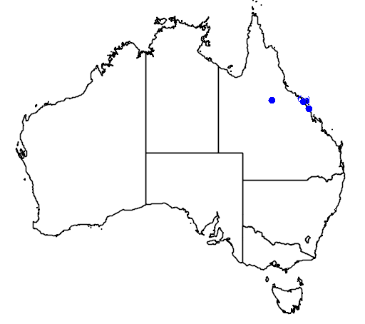 distribution map showing range of Brachychiton compactus in Australia