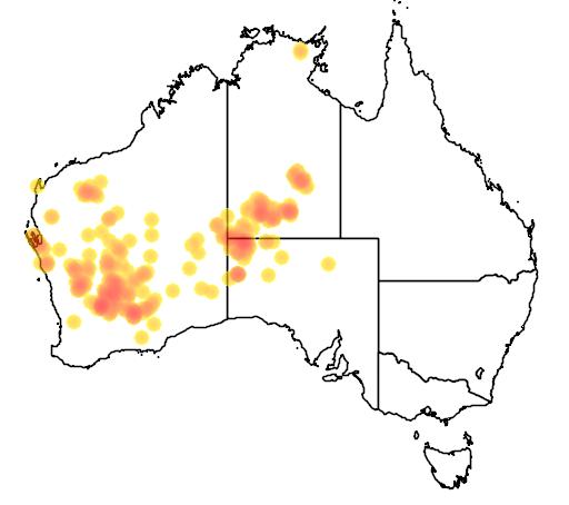 distribution map showing range of Brachychiton gregorii in Australia