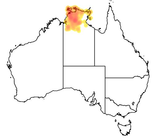 distribution map showing range of Brachychiton megaphyllus in Australia