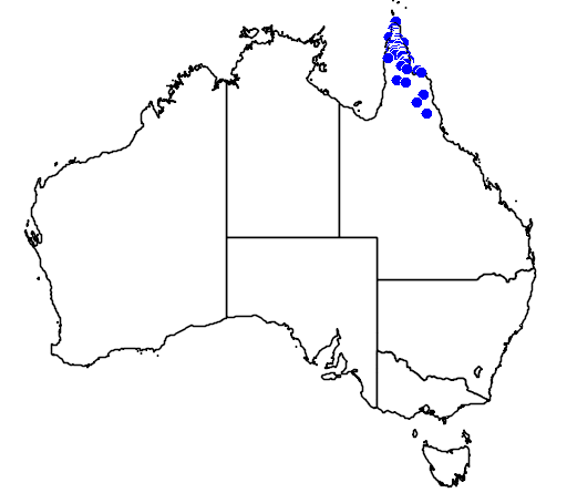 distribution map showing range of Brachychiton muellerianus in Australia