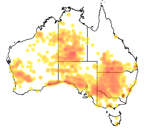 distribution map showing range of Cacatua leadbeateri in Australia