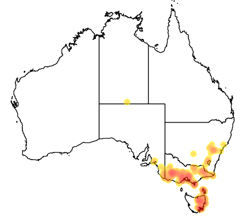 distribution map showing range of Caladenia clavigera in Australia