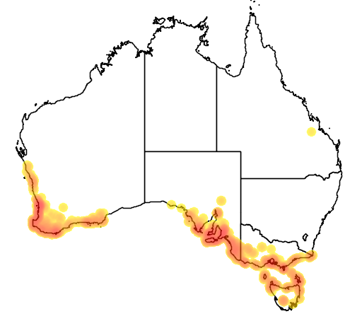 distribution map showing range of Caladenia latifolia in Australia