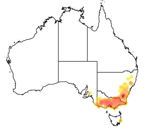 distribution map showing range of Caladenia moschata in Australia