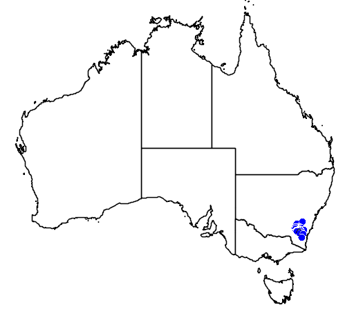 distribution map showing range of Caladenia ustulata in Australia
