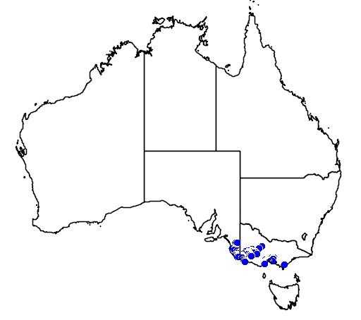 distribution map showing range of Caladenia venusta in Australia