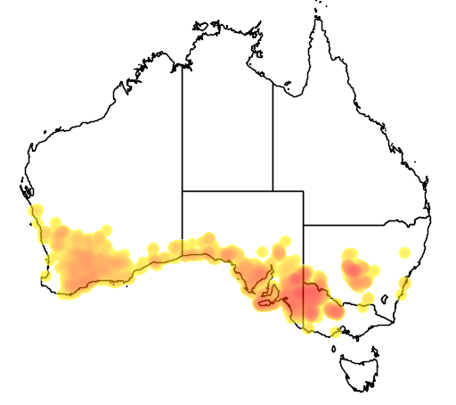 distribution map showing range of Calamanthus cautus in Australia