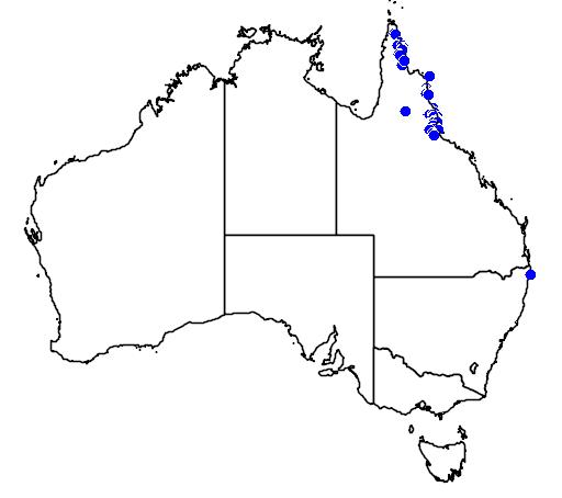 distribution map showing range of Calamus caryotoides in Australia