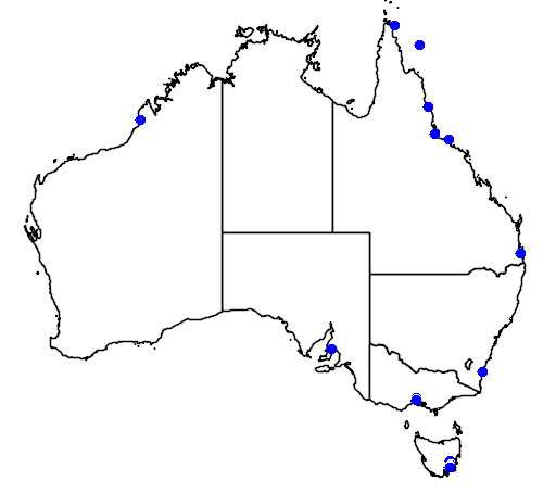 distribution map showing range of Calidris alpina in Australia