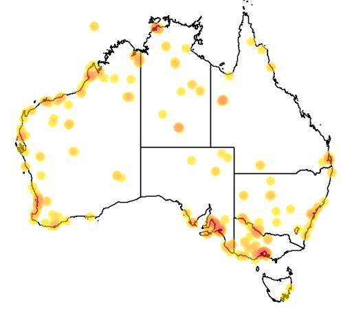 distribution map showing range of Calidris subminuta in Australia