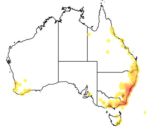 distribution map showing range of Callistemon citrinus in Australia
