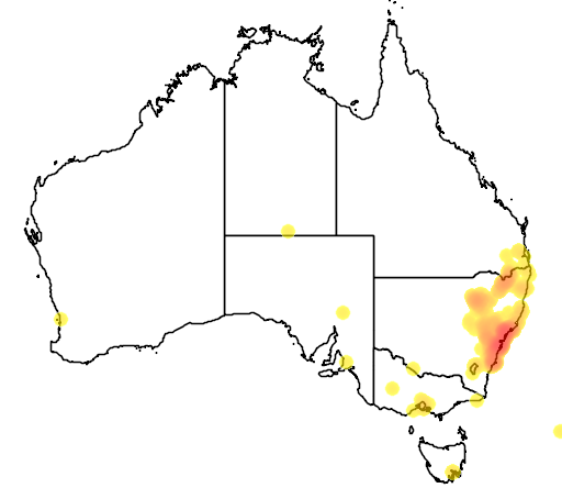 distribution map showing range of Callistemon linearis in Australia
