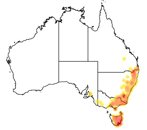 distribution map showing range of Callistemon pallidus in Australia