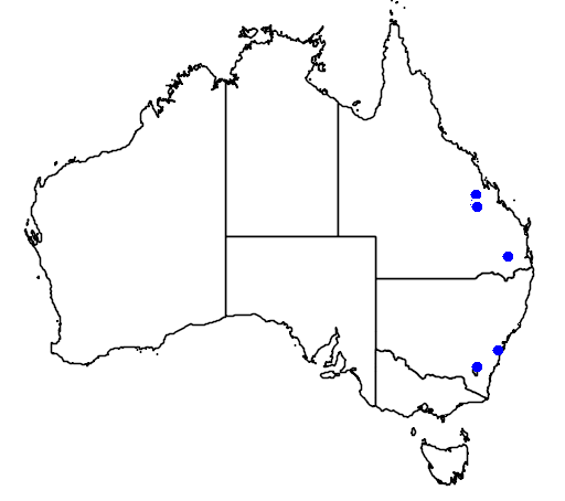 distribution map showing range of Callistemon pearsonii in Australia