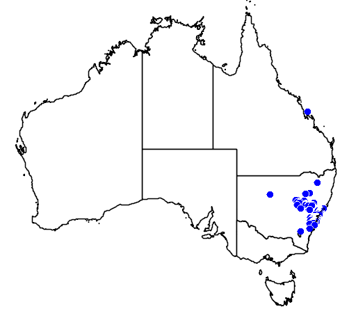 distribution map showing range of Callistemon pinifolius in Australia