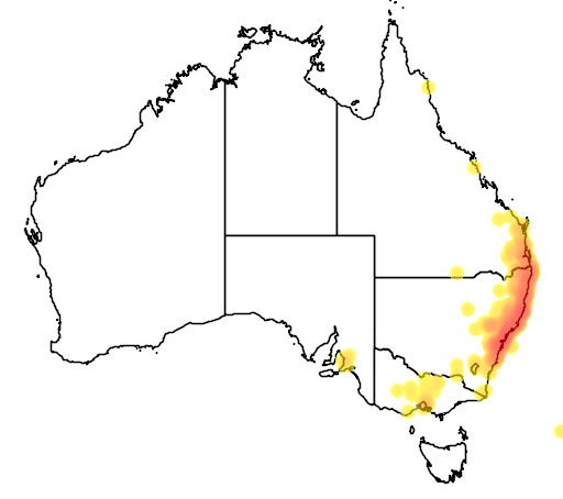 distribution map showing range of Callistemon salignus in Australia
