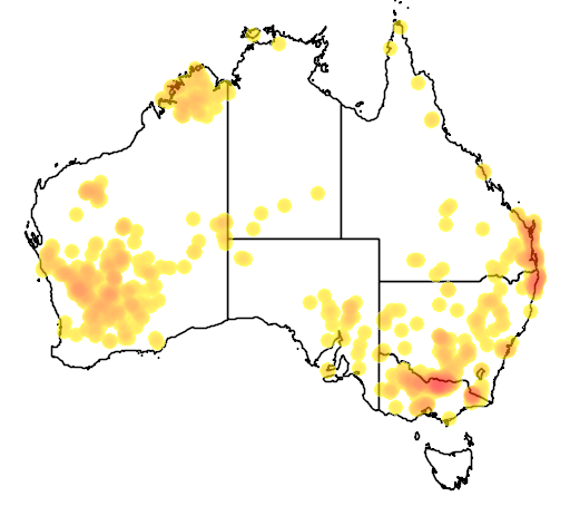 distribution map showing range of Callitris columellaris in Australia