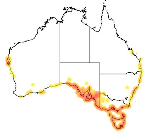 distribution map showing range of Carpobrotus rossii in Australia