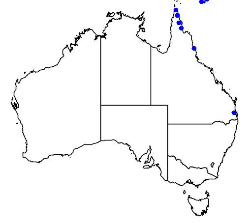 distribution map showing range of Caryota rumphiana in Australia