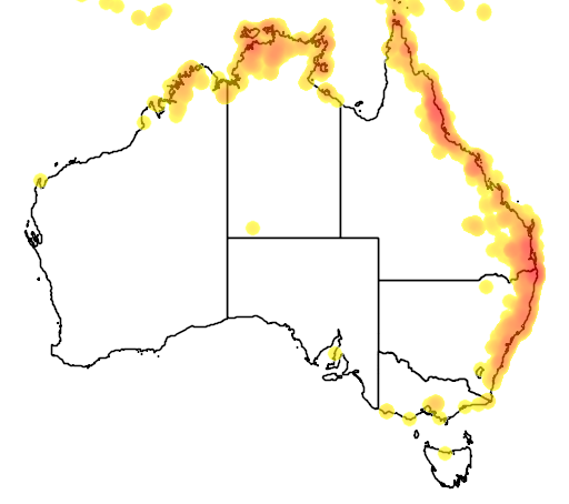distribution map showing range of Chalcophaps indica in Australia