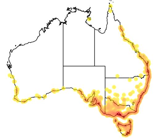 distribution map showing range of Charadrius bicinctus in Australia