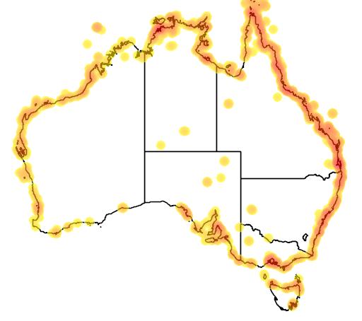 distribution map showing range of Charadrius mongolus in Australia
