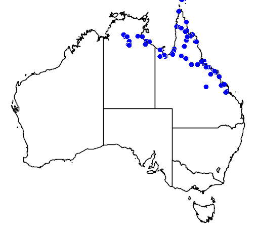 distribution map showing range of Chelodina novaeguineae in Australia