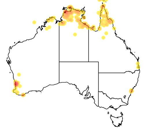 distribution map showing range of Chelodina oblonga in Australia