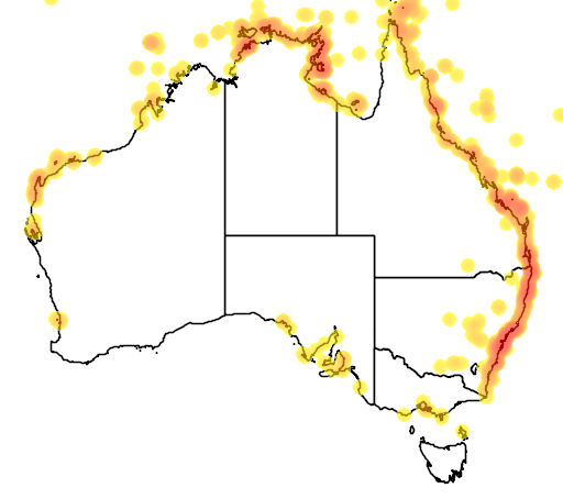 distribution map showing range of Chelonia mydas in Australia