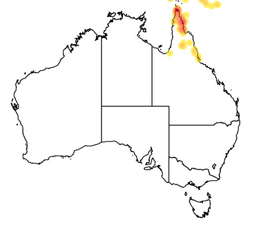 distribution map showing range of Chlamydera cerviniventris in Australia