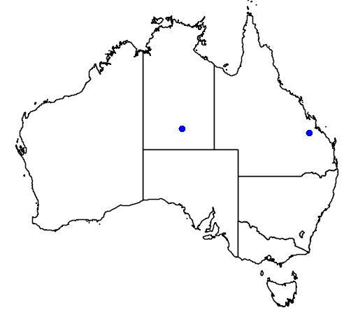 distribution map showing range of Chlamydera nuchalis in Australia