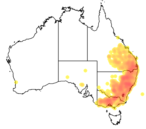 distribution map showing range of Chthonicola sagittatus in Australia