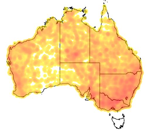 distribution map showing range of Cincloramphus mathewsi in Australia