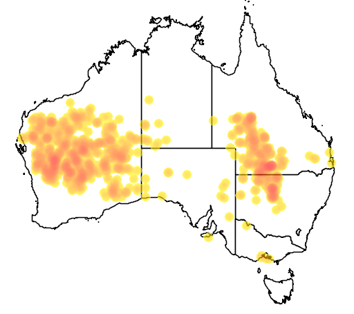 distribution map showing range of Cinclosoma castaneothorax in Australia