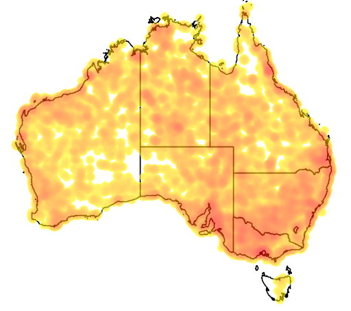 distribution map showing range of Circus assimilis in Australia