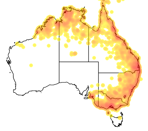 distribution map showing range of Cisticola exilis in Australia