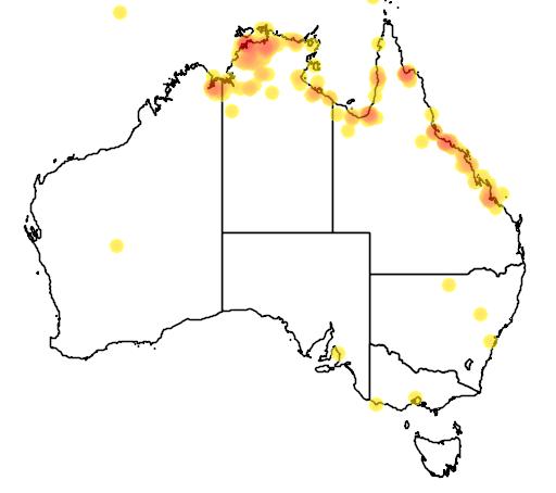 distribution map showing range of Cisticola juncidis in Australia