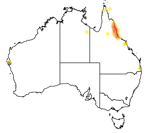 distribution map showing range of Colluricincla boweri in Australia