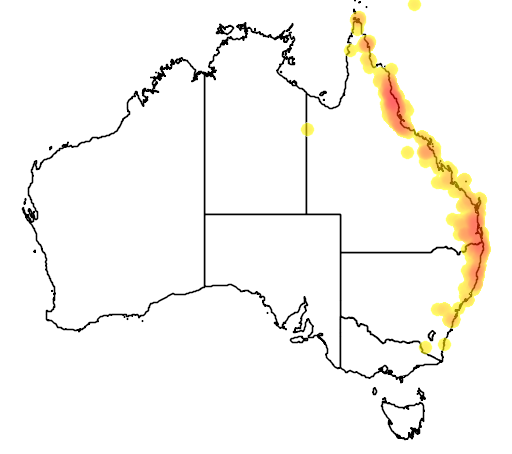 distribution map showing range of Coracina lineata in Australia