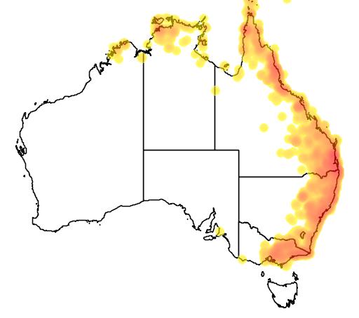 distribution map showing range of Coracina tenuirostris in Australia