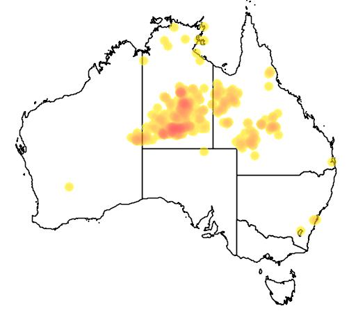 distribution map showing range of Corymbia aparrerinja in Australia