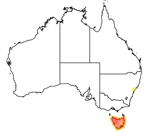 distribution map showing range of Crinia tasmaniensis in Australia