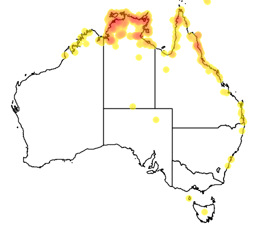 distribution map showing range of Crocodylus porosus in Australia